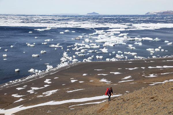 PCOM's Rock Star Goes to Antarctica